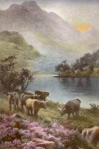 Scene of Countryside in Scotland