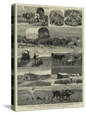 Scenes from an Emigrants's Life in Manitoba