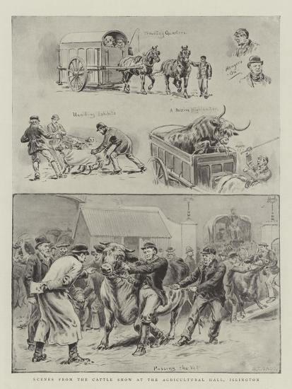 Scenes from the Cattle Show at the Agricultural Hall, Islington-S^t^ Dadd-Giclee Print