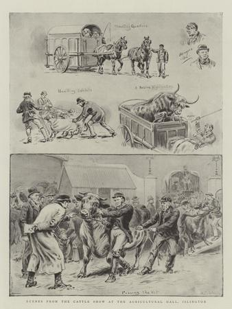 https://imgc.artprintimages.com/img/print/scenes-from-the-cattle-show-at-the-agricultural-hall-islington_u-l-puskym0.jpg?p=0