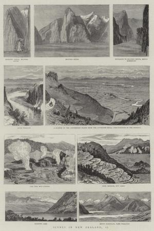 Scenes in New Zealand, II