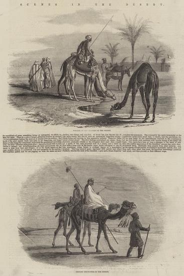 Scenes in the Desert--Giclee Print