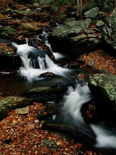 Scenic View of a Waterfall on Smith Creek-Raymond Gehman-Photographic Print