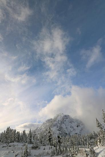 Scenic View of Mount Baker Volcano Snoqualmie National Forest-Donna O'Meara-Photographic Print