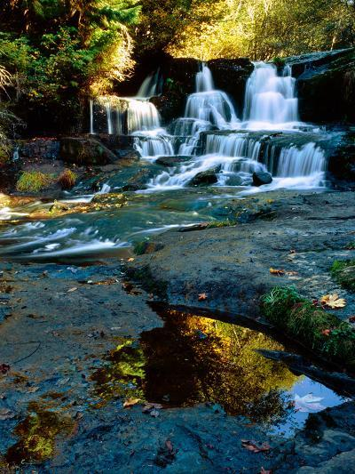Scenic view of waterfall, Alsea Falls, South Fork Alsea River, Benton County, Central Coast Rang...--Photographic Print