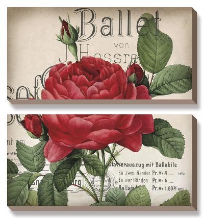 Scent of a Rose I-Sabine Berg-Canvas Art Set