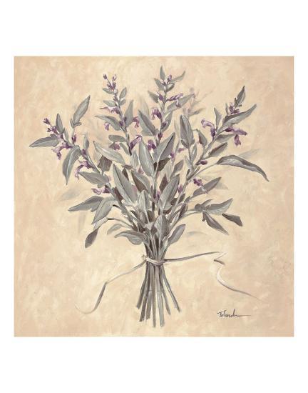 Scent of Sage-Todd Telander-Art Print