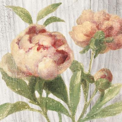 Scented Cottage Florals I Crop-Danhui Nai-Art Print