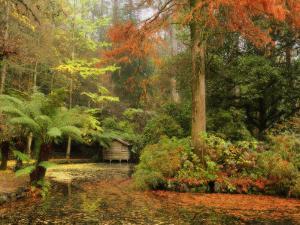 Boathouse, Alfred Nicholas Gardens, Dandenong Ranges, Victoria, Australia, Pacific by Schlenker Jochen