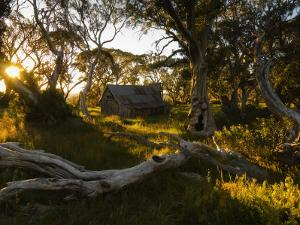 Wallace's Hut, Bogong High Plains, Apline National Park, Victoria, Australia, Pacific by Schlenker Jochen