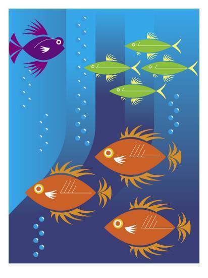 School of Fish--Art Print