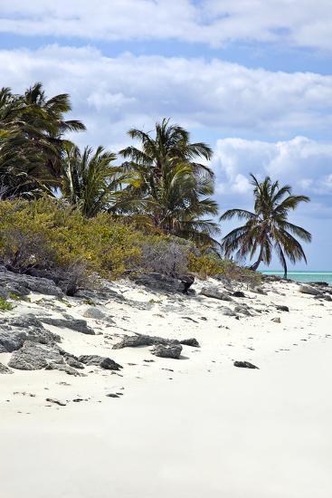 Schooner Cay Coastline-Larry Malvin-Photographic Print