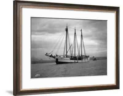 Schooner Great Bear, 1916-Asahel Curtis-Framed Giclee Print
