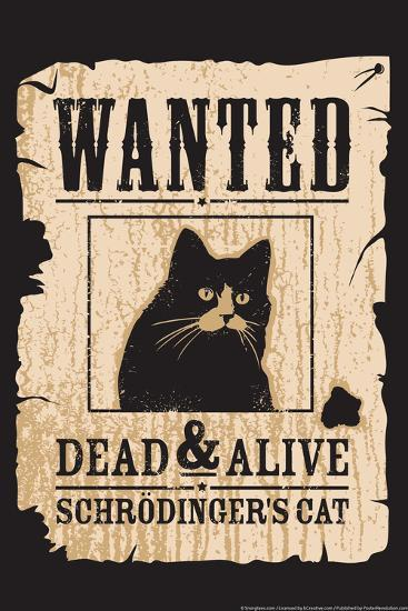 Schrodinger's Cat-Snorg-Poster
