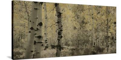 Schwartz - A Wisp of Gold-Don Schwartz-Stretched Canvas Print