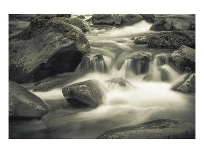 Schwartz - Blue Flowing-Don Schwartz-Art Print