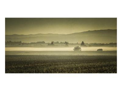 Schwartz - Dawn's Early Light-Don Schwartz-Premium Giclee Print