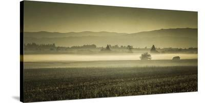 Schwartz - Dawn's Early Light-Don Schwartz-Stretched Canvas Print