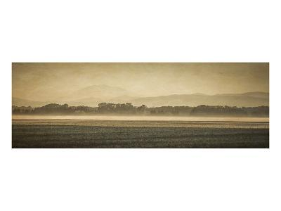 Schwartz - Sauvie Island Serenity-Don Schwartz-Premium Giclee Print