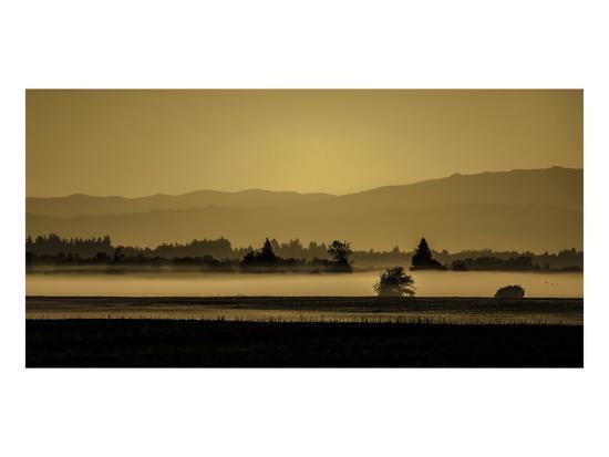 Schwartz - Soft Blanket of Fog-Don Schwartz-Premium Giclee Print