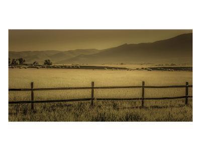 Schwartz - Yampa Valley Morning-Don Schwartz-Premium Giclee Print