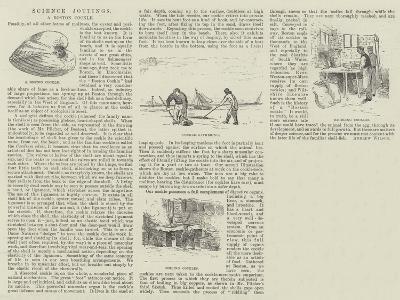 Science Jottings--Giclee Print