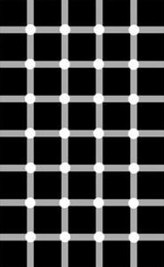 Scintillating Grid Illusion by Science Photo Library