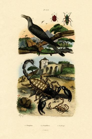 Scorpions, 1833-39--Giclee Print