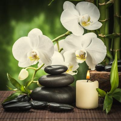 Spa Concept with Zen Basalt Stones and Orchid by scorpp