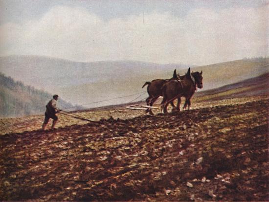 'Scotland', c1930s-Unknown-Giclee Print