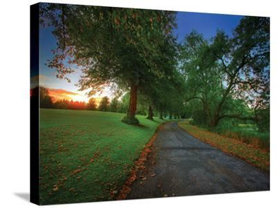 Scotland Road-Dale MacMillan-Stretched Canvas Print