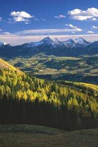 Aspens in Fall Last Dollar Road Telluride Colorado by Scott Cramer
