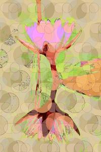 Water Lily Reflection by Scott J. Davis