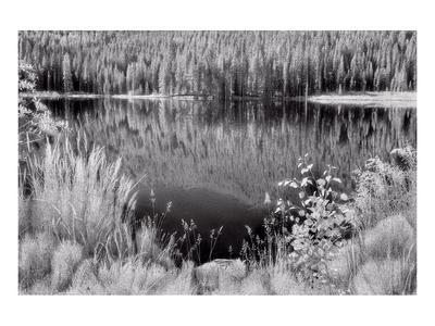 Diemer Lake