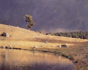 Lone Pine by Scott Peck