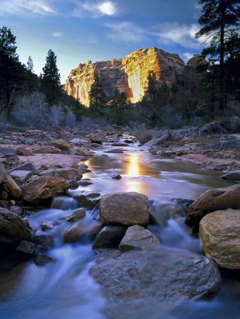 Bears Ears National Monument, Utah. USA. Creek in Arch Canyon. Manti-La Sal NF. Colorado Plateau.