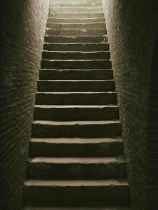 Cellar Steps by Scott Sroka