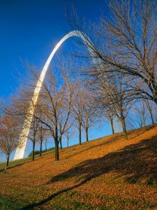 Autumn Trees Below Gateway Arch, Jefferson National Expansion, St. Louis, Missouri, USA by Scott T^ Smith