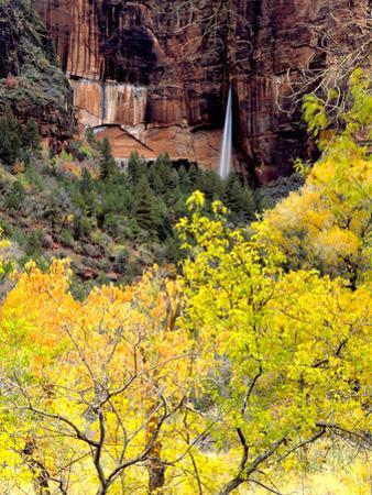 Ephemeral Waterfall, Zion National Park, Utah, USA