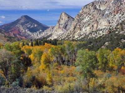 Flaming Gorge NRA, Utah. Overlook into Sheep Creek Canyon in Autumn