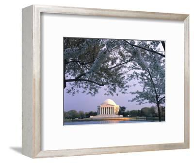 Jefferson Memorial and Cherry Blossoms at Sunrise, Tidal Basin, Washington Dc, Usa