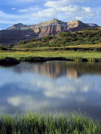 Kings Peak Massif Reflected, High Uintas Wilderness, Utah, Usa