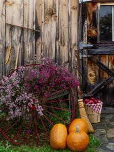 Outside barn in autumn at Drury Place. Weston, Vermont, USA by Scott T^ Smith
