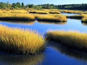 Salt Marsh at Sunrise, Estuary of New Meadow River in Early Autumn, Maine, Usa by Scott T^ Smith