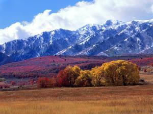Utah. Autumn Snow on Wellsville Mts Above Maple and Cottonwood Trees by Scott T. Smith