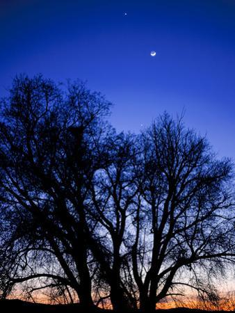 Utah. Venus, the Moon, and Jupiter in a Compact Grouping in the Sky