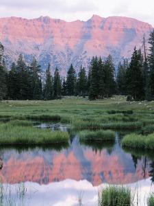 Wasatch National Forest, Ostter Peak, High Uintas Wilderness, Utah, USA by Scott T^ Smith