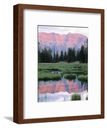 Wasatch National Forest, Ostter Peak, High Uintas Wilderness, Utah, USA