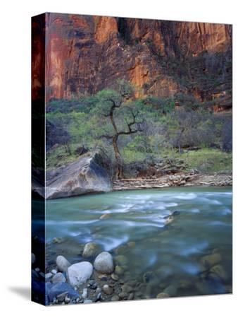 Zion Canyon, Zion National Park, Utah, USA