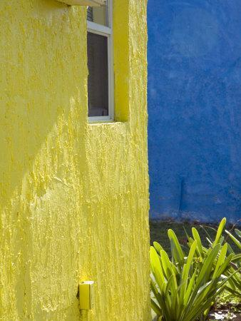 Colorful Buildings at a Tropical Andros Island Getaway